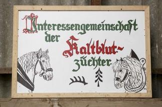 Hengstschau Langenau 2016 IMG_4363